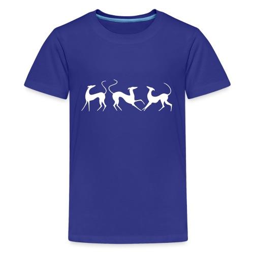 Windhundfries - Teenager Premium T-Shirt