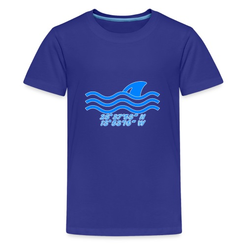 Koordinaten - Teenager Premium T-Shirt