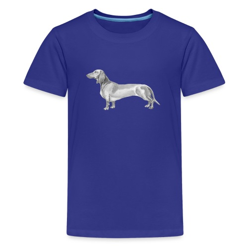Dachshund smooth haired - Teenager premium T-shirt