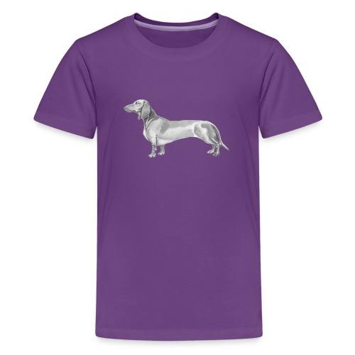 Dachshund smooth haired - Teenager premium T-shirt