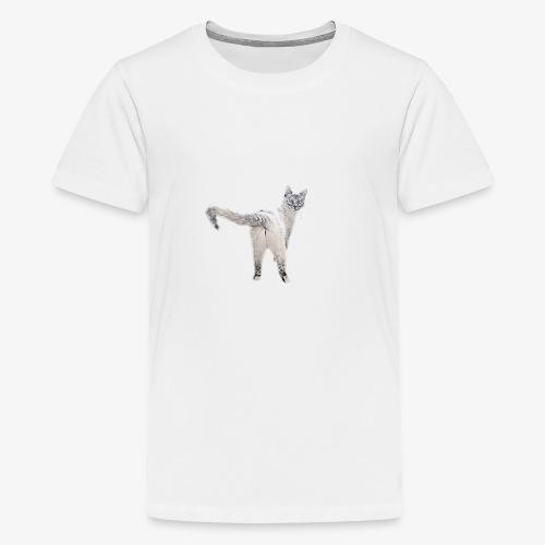 snow1 - Teenage Premium T-Shirt