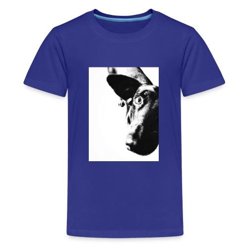 Einauge - Teenager Premium T-Shirt
