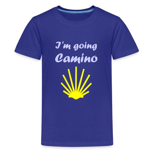 Going Camino