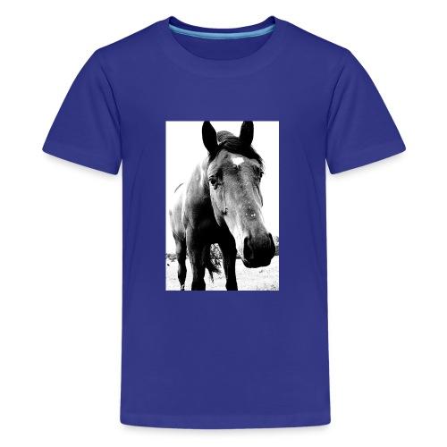 Hest - Premium T-skjorte for tenåringer
