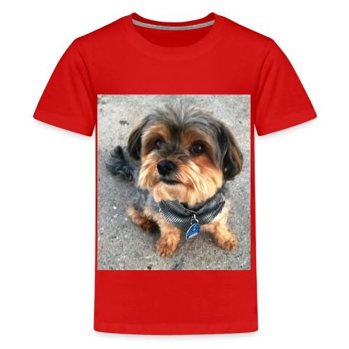 WP 20140703 002 - Teenager Premium T-Shirt