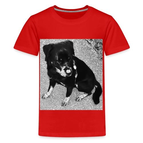 Rottweiler - Teenager Premium T-Shirt