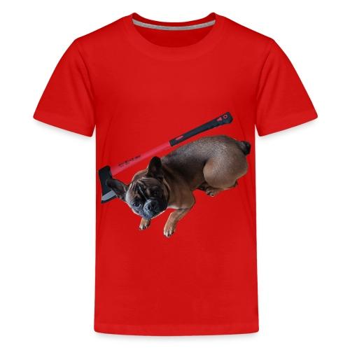 Bully kennt die Antwort - Teenager Premium T-Shirt