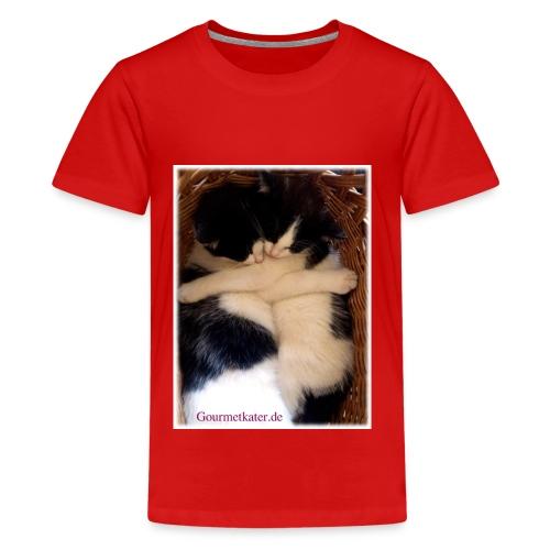 Umarmung - Teenager Premium T-Shirt