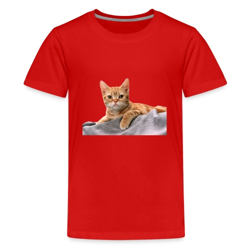Cuddly Cute Kitty Cat - Teenage Premium T-Shirt