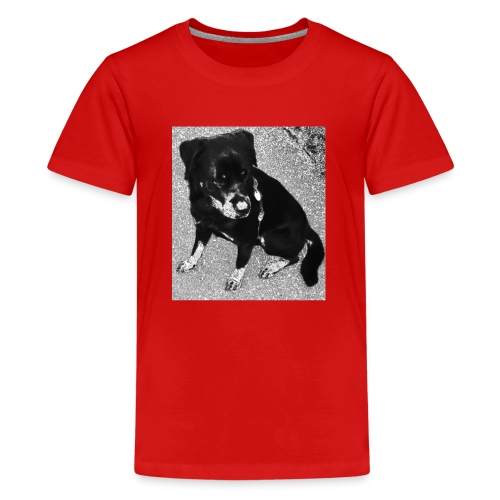 Rottweiler - Teenager Premium T-Shirt