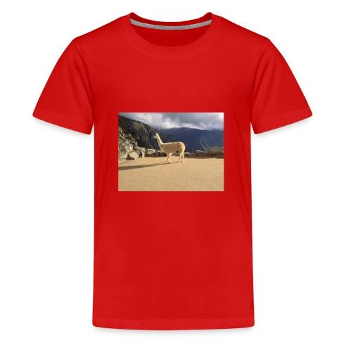 Lama la grace et la classe - T-shirt Premium Ado