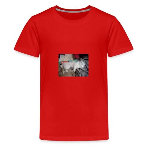 26814955 1940292332897760 3360658952995218362 n - Teenager Premium T-Shirt