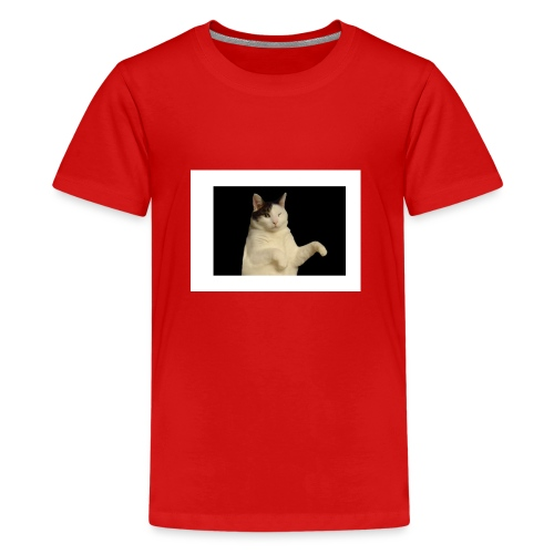 Kitty cat - Teenager Premium T-shirt