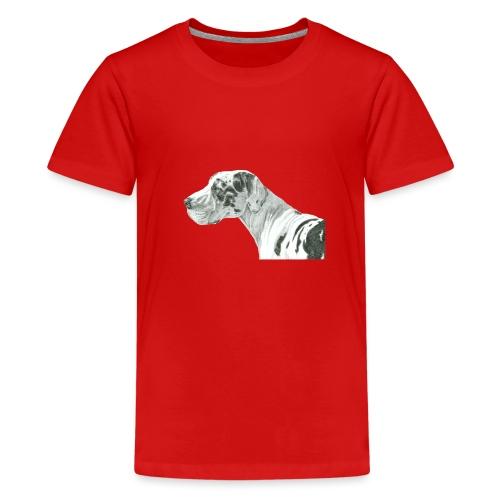 grand danios harlequin - Teenager premium T-shirt