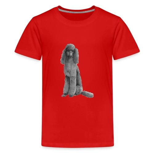 poodle standard black / kongepuddel sort - Teenager premium T-shirt