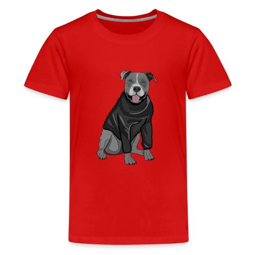 Süßer Hund Pullover Pulli Stafford Geschenk Idee - Teenager Premium T-Shirt