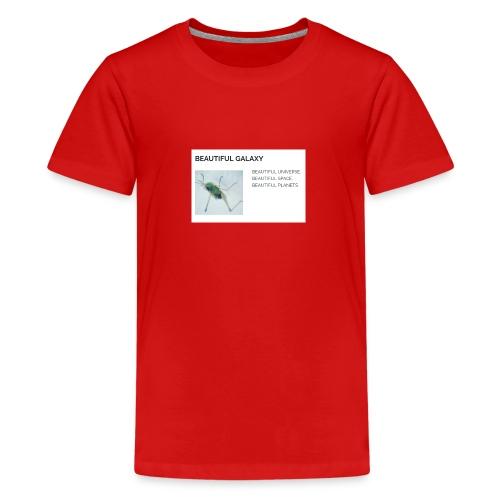 BEAUTIFUL UNIVERSE - Teinien premium t-paita