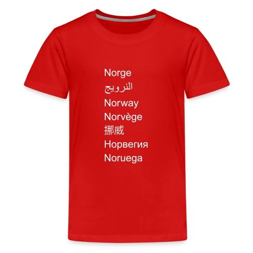 FN-Norge - plagget.no - Premium T-skjorte for tenåringer
