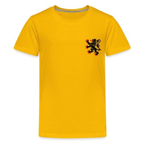 Nord-Pas-De-Calais - T-shirt Premium Ado