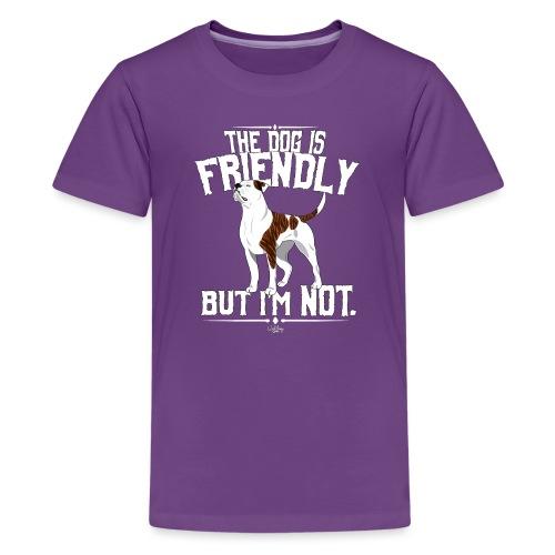 ABfriendly3 - Teenage Premium T-Shirt