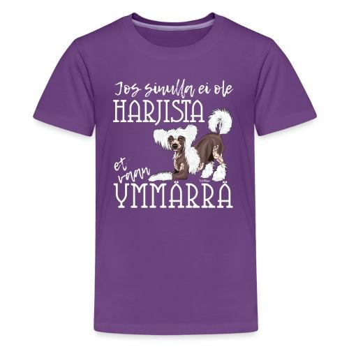 Harjis Ymmärrä II - Teinien premium t-paita