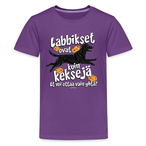Labradori Keksi 3 - Teinien premium t-paita