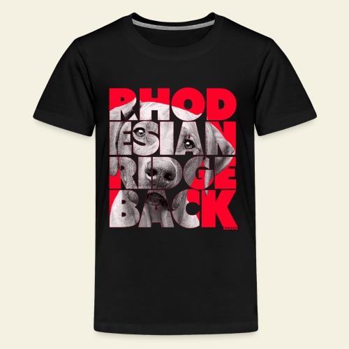 NASSU Rhode 3 - Teinien premium t-paita