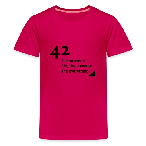 42 - the answer to life, the universe & everything - Teenager Premium T-Shirt