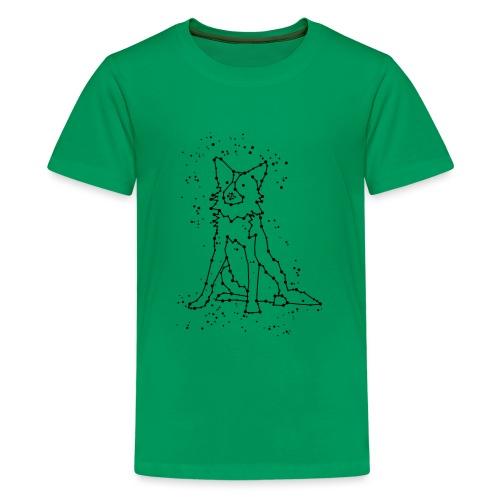 Constellation - T-shirt Premium Ado