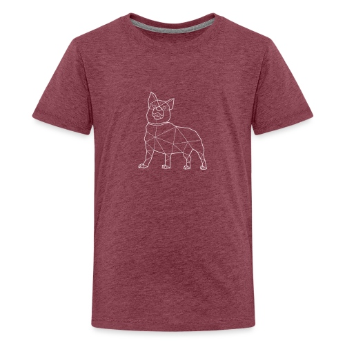LOKI - Teinien premium t-paita