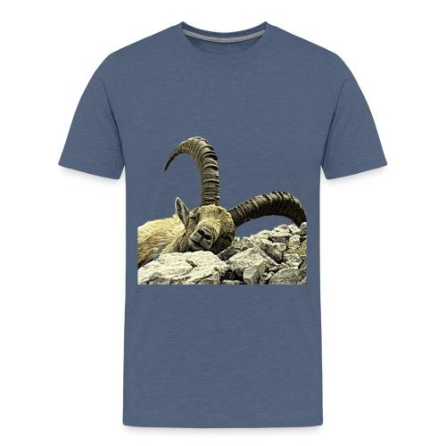 Walser Steinbock Relax - Teenager Premium T-Shirt