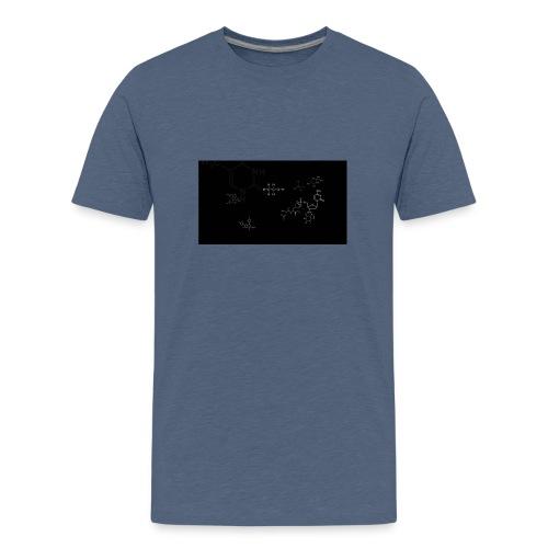 FessorVidenskabsTrøjen - Teenager premium T-shirt