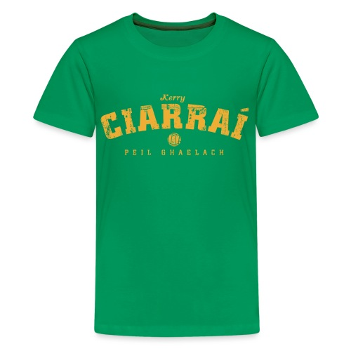 kerry vintage - Teenage Premium T-Shirt