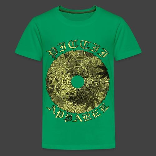 RFPICAPP046B - COL3 - Teenage Premium T-Shirt