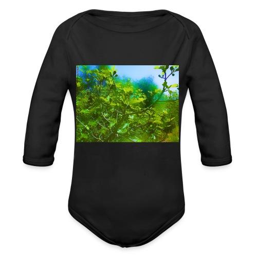 paysage_filtre - Body bébé bio manches longues