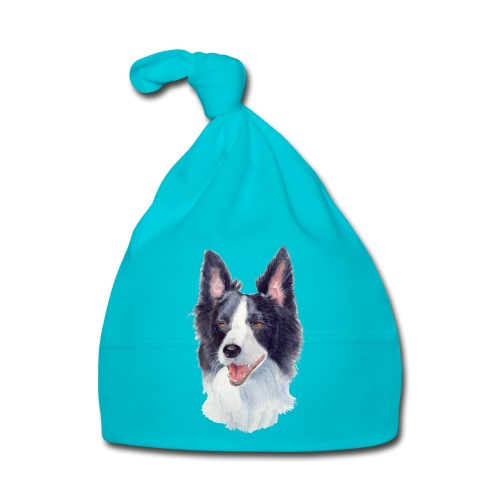 border collie akv 1 - Babyhue