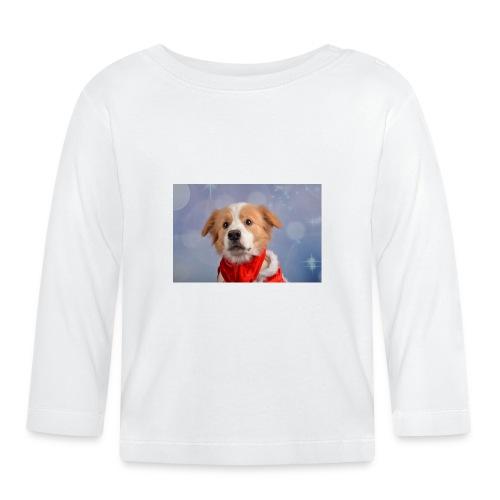 DSC_2040-jpg - T-shirt