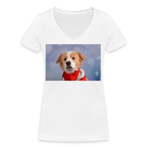DSC_2040-jpg - Vrouwen bio T-shirt met V-hals van Stanley & Stella