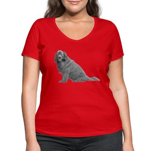 newfoundland - Økologisk Stanley & Stella T-shirt med V-udskæring til damer