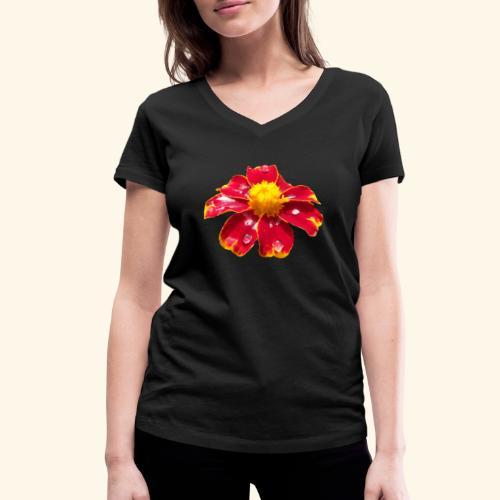 rote Ringelblume mit Regentropfen, Blume, Blüte - Frauen Bio-T-Shirt mit V-Ausschnitt von Stanley & Stella