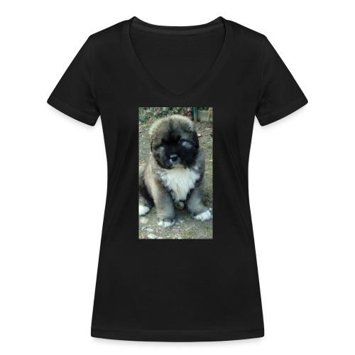 Kolekcja Kazan - Ekologiczna koszulka damska z dekoltem w serek Stanley & Stella