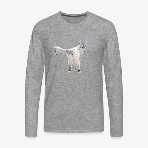 snow1 - Men's Premium Longsleeve Shirt