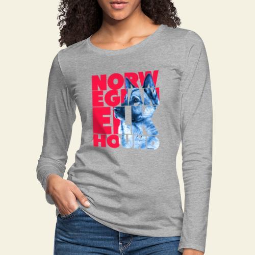 NASSU Norjanharmaa 3 - Naisten premium pitkähihainen t-paita