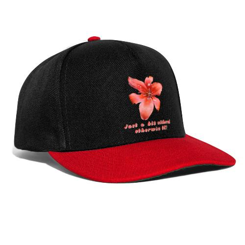 Just a bit withered otherwise ok - Snapback Cap