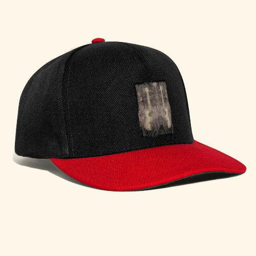 Mirrored Guitars - Snapback Cap