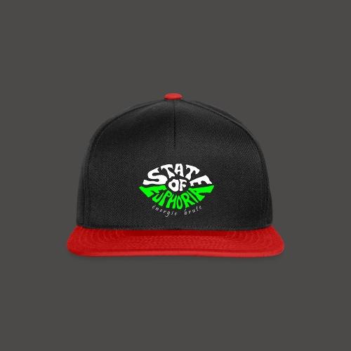 SOE logo - Snapback Cap