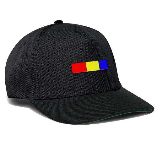Klassisches te.comp Logo - Snapback Cap
