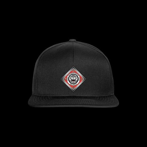 2on1 Ry logo 1 png - Snapback Cap