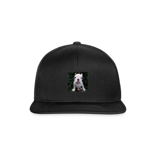 Billy Puppy 2 - Snapback cap
