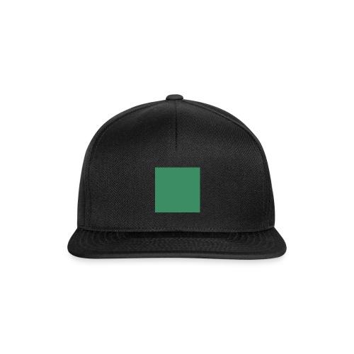 test 3 - Snapback Cap